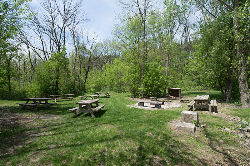 Grilling-Picnic-Area_1.jpg